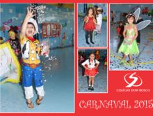 Multimedia_thumb_carnaval_2015_ei